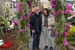 2017_03_11 Medzinárodná výstava orchideí 058