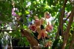 2017_03_11 Medzinárodná výstava orchideí 110