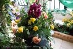 2017_03_11 Medzinárodná výstava orchideí 126