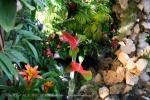 2017_03_11 Medzinárodná výstava orchideí 129