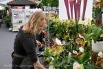 2017_03_11 Medzinárodná výstava orchideí 141